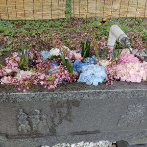 錦山天満宮、手水舎に花を浮かべる「花手水」、2021年5月1日から期間限定で開催【江別市】