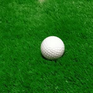 北海道江別市出身、片岡尚之選手が男子ゴルフツアーで初優勝【江別市】