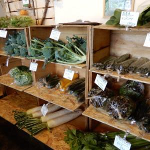ほっぺぱん、江別の朝採り野菜アスパラ、ブロッコリー、レタスなどを直売【江別市】