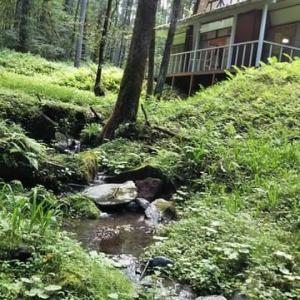 浅間高原の湧き水がさらさら庭に流れて