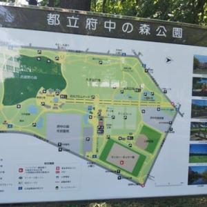 コロナを避けて広い公園に近い場所に住みませんか