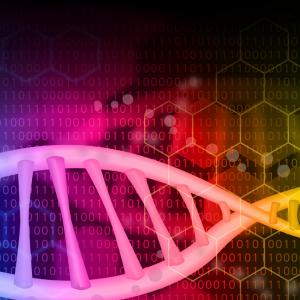 努力の方向性:人生は遺伝子で決まってしまうことも多い(育休71日目)