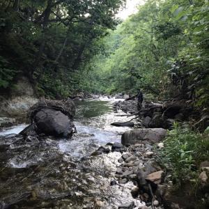 獣臭と足跡と尺岩魚。