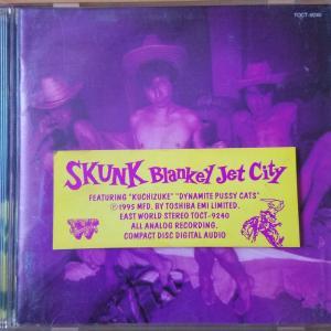 SKUNK【BLANKEY JET CITY】