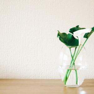 環境にやさしい掃除の仕方