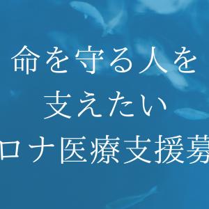 【ヒカキンTV】コロナ医療支援募金【一人一人ができることを】