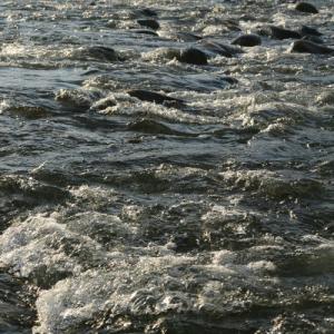 2日連続で夜明けの犀川