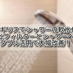 【イギリス 硬水対策】シャワーの軟水化。軟水化フィルターとシャワーヘッドのダブル活用で大幅改善!