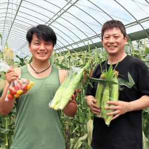 シミズガーデン【メッチャ甘ーいトウモロコシの収穫が東大阪で出来るなんて~♪】