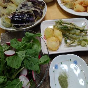 スギナ入りぼかし肥づくり&スギナ塩でネギ坊主の天ぷらを食べました!