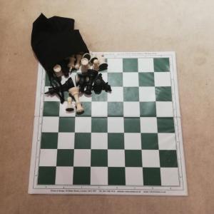 チェスと、チェスの先生との出会い。