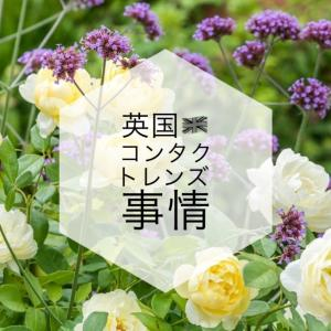 日本と違う⁈イギリスのコンタクトレンズ洗浄液