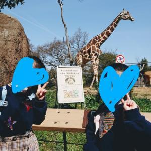 天王寺動物園に行って来ました