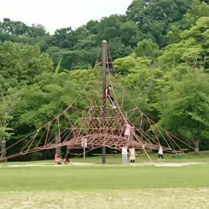 奈良の香久山公園に行って来ました