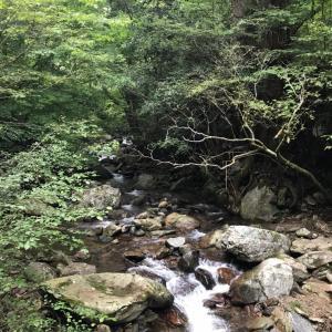 花園渓谷ハイキング
