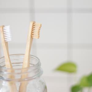 【お茶の力で口内ケア】歯周病対策は大人のマナー