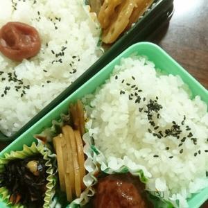 モーニング丼&ランチ弁当