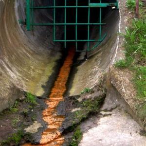 環境省「瀬戸内海きれいすぎ!ダメ!下水処理場から排出必要!」是正 水域設け対策、漁業影響防ぐ法改正へ