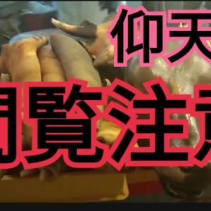 スラム!?飯が50円!!超治安悪いエリア