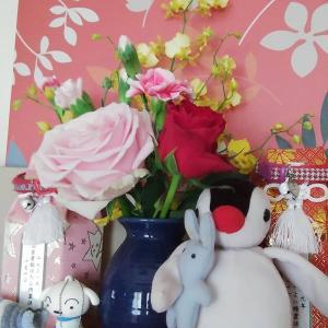 【ピュアフラワー】花の定期便はじめました♪