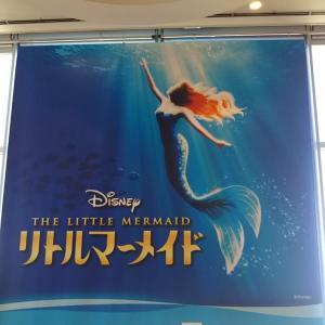 43.  リトルマーメイド~ビルの中を人魚が泳ぐ~