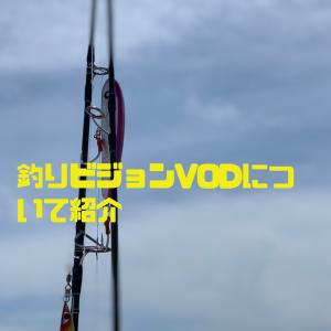 釣りに特化した動画配信サービス釣りビジョンVOD