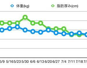【3ヶ月の結果】リーンゲインズダイエット(プチ断食) 13週間経過