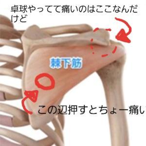 【なんて読む?】「肩痛」の、その後