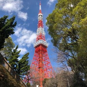 【営業再開の東京タワー・展望台まで階段?】