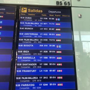 旅行に行けないけど、世界中の飛行機追跡出来ちゃうよ!