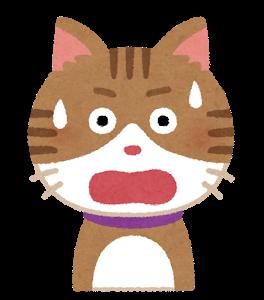 【画像】猫さん「眠いにゃー」←なんか取れてますよwww