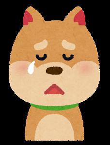 【GIF】イッヌさん「助けてンゴ……くぅん…」ズリズリ←神演技すぎて草www