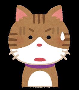 【動画】猫ってこんな身軽なのかよ、ハラハラするわwwww