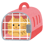 【ほのぼの】うちの猫様用にリュック型のキャリーケース買おうと思ったら、合うサイズが無いことに気付いた…