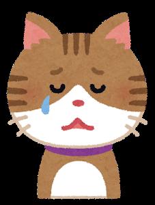 【画像】とてもかわいそうな猫さんが見つかる…これはいけないwww