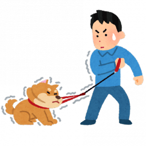 【ほのぼの】うちの犬と散歩してたらドラストの前でいきなり地べたに貼り付いて動かなくなったww