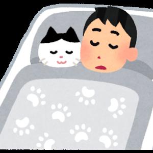 猫が俺の布団に入ってくる→猫「んんんー!!ぅんー!!!ぅぅんー!!」←寝言すごい…