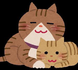 【ほのぼの】うちの子猫にスープとか出すと砂をかくような動作するんだけど、どういう意味なのかな?