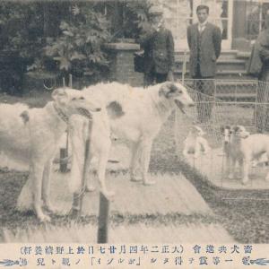【画像多め】100年以上前のイッヌさんたちの写真がこちら…イケメンで草www
