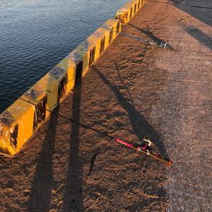 早起き出来ました。釣りへGO