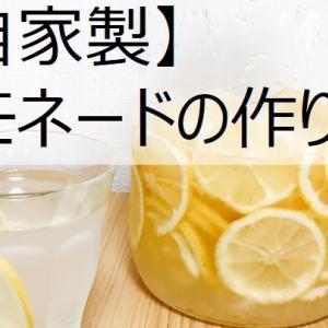 【自家製】レモネードの作り方