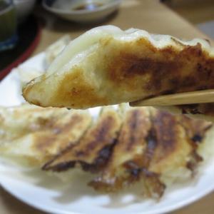 食べてみた♪ 本場宇都宮の餃子