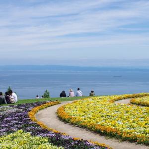 淡路花さじき@瀬戸内を望む絶景の花畑