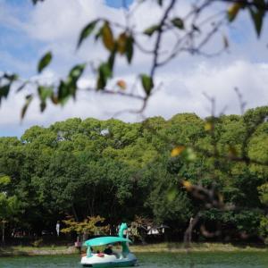 秋色散歩@明石公園