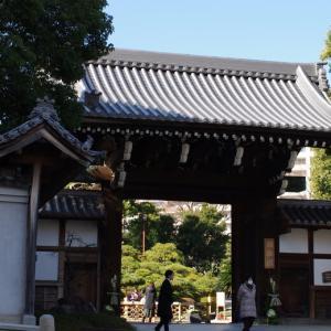 日本庭園を歩く@神戸相楽園