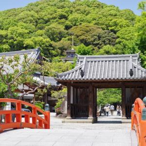 新緑萌える須磨寺にて