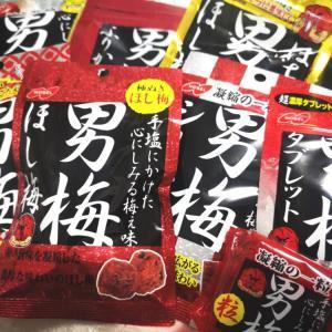 本格的濃厚梅干し ノーベル製菓「男梅」シリーズ徹底研究!!口コミするよ