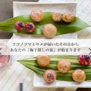 9種類の梅干しを楽しめる 福梅本舗「ココノツマミウメ」の魅力