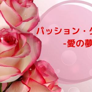 パッション・ダムール-愛の夢-