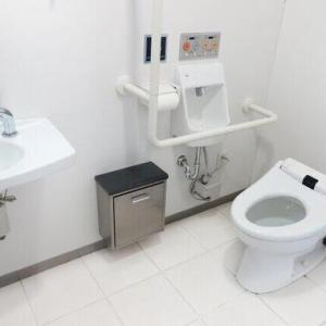 渡部の「多目的トイレ不倫」が物議 設備メーカーも「悲しく、情けない限りです」